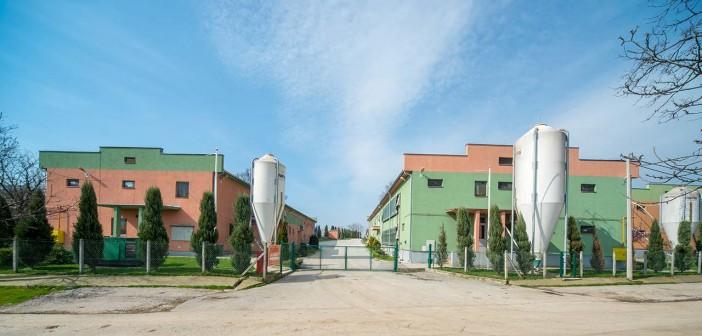 Farma za tov pilića Kovacevac